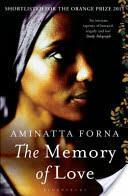 Memory of Love (2011)