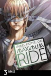 Maximum Ride: Manga (2010)