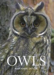 Owls (ISBN: 9780801451812)