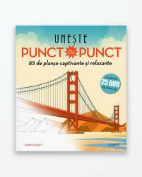 UNESTE PUNCT CU PUNCT (ISBN: 9786067932416)