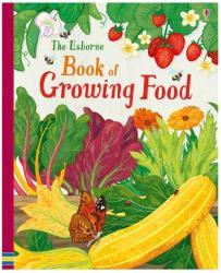 Usborne Book of Growing Food - Abigail Wheatley (ISBN: 9781409598855)