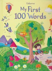 My first 100 words (ISBN: 9781474937207)