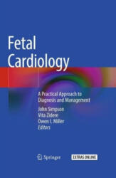 Fetal Cardiology - A Practical Approach to Diagnosis and Management (ISBN: 9783319774602)