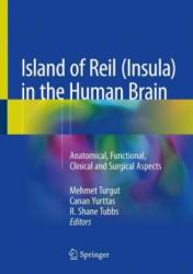 Island of Reil (ISBN: 9783319754673)