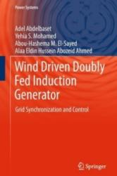 Wind Driven Doubly Fed Induction Generator - Adel Abdelbaset, Yehia S. Mohamed, Abou-Hashema M. El-Sayed, Alaaeldin Hussein Abozeid (ISBN: 9783319701073)