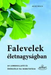 Falevelek életnagyságban (ISBN: 9786155723124)