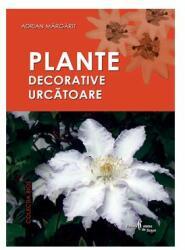 Plante decorative urcătoare (2006)