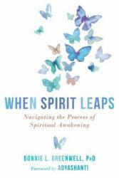 When Spirit Leaps - Bonnie L. Greenwell, Adyashanti (ISBN: 9781684030767)