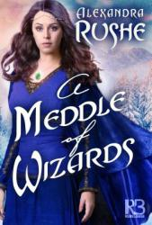 A Meddle of Wizards (ISBN: 9781635730111)