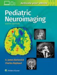 Pediatric Neuroimaging (ISBN: 9781496337207)
