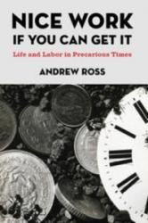 Nice Work If You Can Get it (ISBN: 9780814776919)