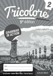 Tricolore Grammar in Action Workbook 2 (ISBN: 9781408527443)