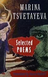 Selected Poems (ISBN: 9781852240257)