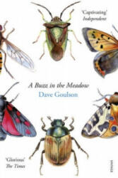Buzz in the Meadow (ISBN: 9780099597698)