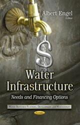 Water Infrastructure (ISBN: 9781628081749)