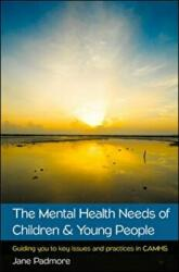 Mental Health Needs of Children & Young People: Guiding You to Key Issues and Practices in CAMHS (ISBN: 9780335263905)