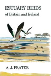 Estuary Birds of Britain and Ireland - A. J. Prater (ISBN: 9781408138496)