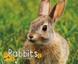 Rabbits (ISBN: 9781474721844)