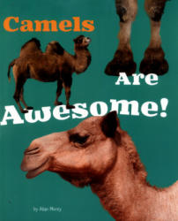 Camels are Awesome! (ISBN: 9781474702577)