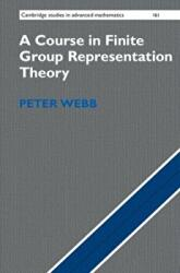 Course in Finite Group Representation Theory (ISBN: 9781107162396)