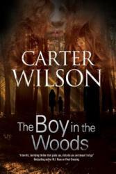 Boy in the Woods (ISBN: 9781847517883)