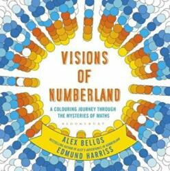 Visions of Numberland, Paperback (ISBN: 9781408888988)