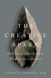 Creative Spark - How Imagination Made Humans Exceptional (ISBN: 9781101983942)