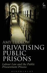Privatising Public Prisons - Amy Ludlow (ISBN: 9781509914135)