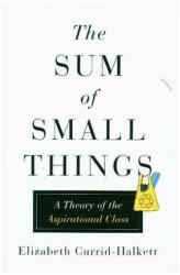 Sum of Small Things - A Theory of the Aspirational Class (ISBN: 9780691162737)