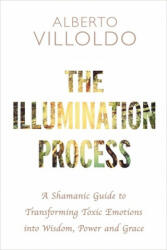 Illumination Process - A Shamanic Guide to Transforming Toxic Emotions into Wisdom, Power and Grace (ISBN: 9781781808610)