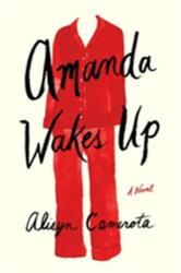 Amanda Wakes Up (ISBN: 9780399563997)