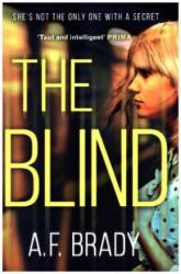 Blind (ISBN: 9781848456754)