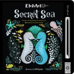 Etchart: Secret Sea - Aj Wood, Mike Jolley, Dinara Mirtalipova (ISBN: 9781786030498)