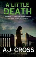 Little Death (ISBN: 9780727897985)