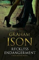 Reckless Endangerment (ISBN: 9780727893109)