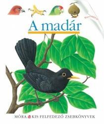 A madár /Kis felfedező zsebkönyvek (2012)