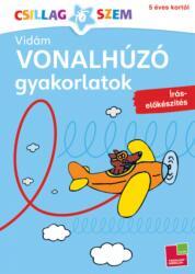 Vidám vonalhúzó gyakorlatok - Írás-előkészítés (2012)