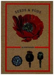 Seeds And Pods - 24 Postcards (ISBN: 9781524759056)