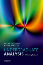 Undergraduate Analysis - A Working Textbook (ISBN: 9780198817574)