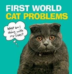 First World Cat Problems - What am I doing with my lives? (ISBN: 9781785039621)