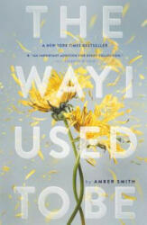 The Way I Used to Be (ISBN: 9781481449366)