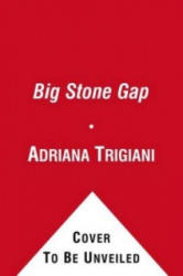Big Stone Gap - Adriana Trigiani (ISBN: 9781849834025)