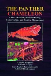 Panther Chameleon - Achille Raselimanana (ISBN: 9781575241944)