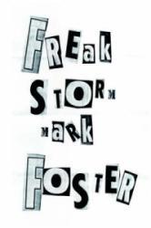 Freak Storm - Mark Foster (ISBN: 9781425933647)