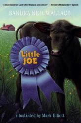 Little Joe (ISBN: 9780375854507)