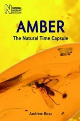 Amber (ISBN: 9780565092580)