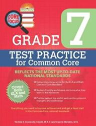 Core Focus - Grade 7 Test Practice (ISBN: 9781438007069)