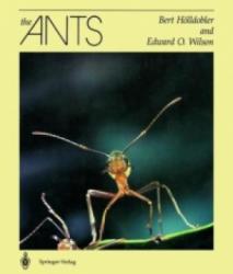 Ants (1990)