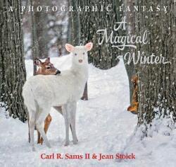 A Magical Winter (ISBN: 9780982762585)