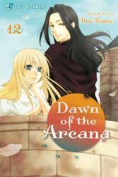 Dawn of the Arcana, Volume 12 (ISBN: 9781421564579)